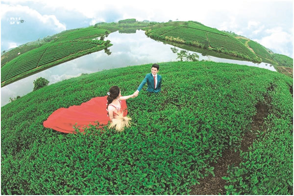 Tea islands lure tourists to central province