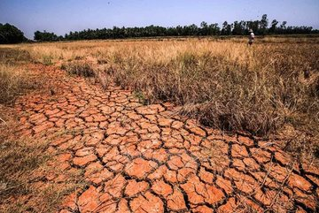 Mekong Delta may face saline intrusion months earlier than normal