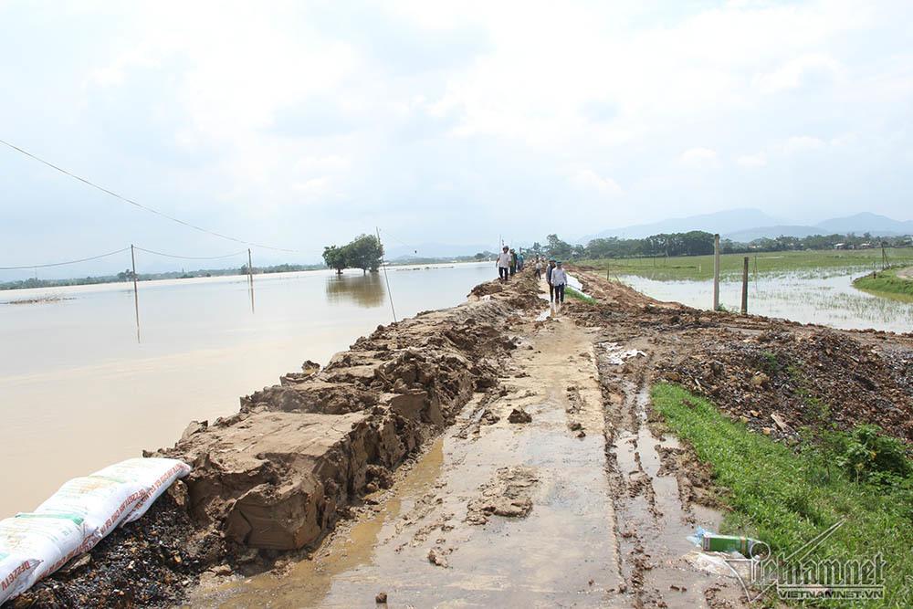 ngập lụt,đê Chương Mỹ,Hà Nội,bão số 4,bão Podul