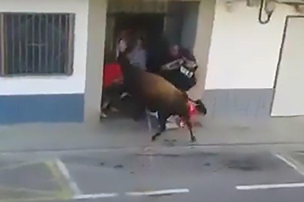 Kinh hoàng bò tót điên húc chết người trong lễ hội đường phố