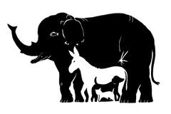 Tìm những con vật đang lẩn trốn trong bức tranh