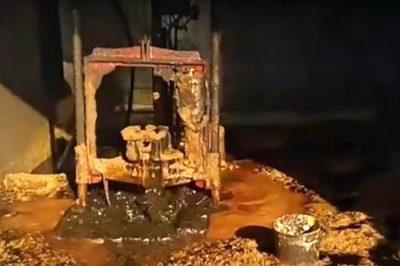 Phát hiện 'mỏ vàng' khi đào giếng trong vườn nhà