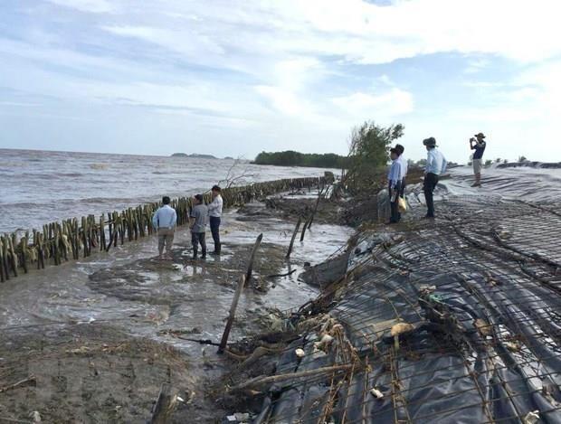 Mekong Delta,An Giang,along Hau River,serious erosion,social news,vietnamnet bridge,english news,Vietnam news,vietnamnet news,Vietnam latest news,Vietnam breaking news,Vietnamese newspaper,news vietnam