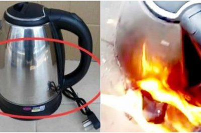 Sai lầm phổ biến khiến ấm siêu tốc tốn điện, nhanh hỏng