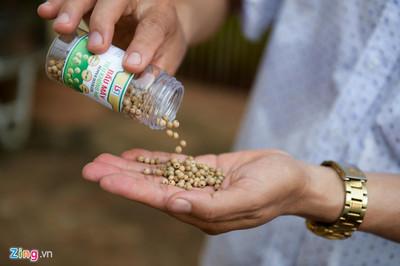 Hơn 15 triệu đồng/kg tiêu ăn như kẹo đầu tiên tại Việt Nam