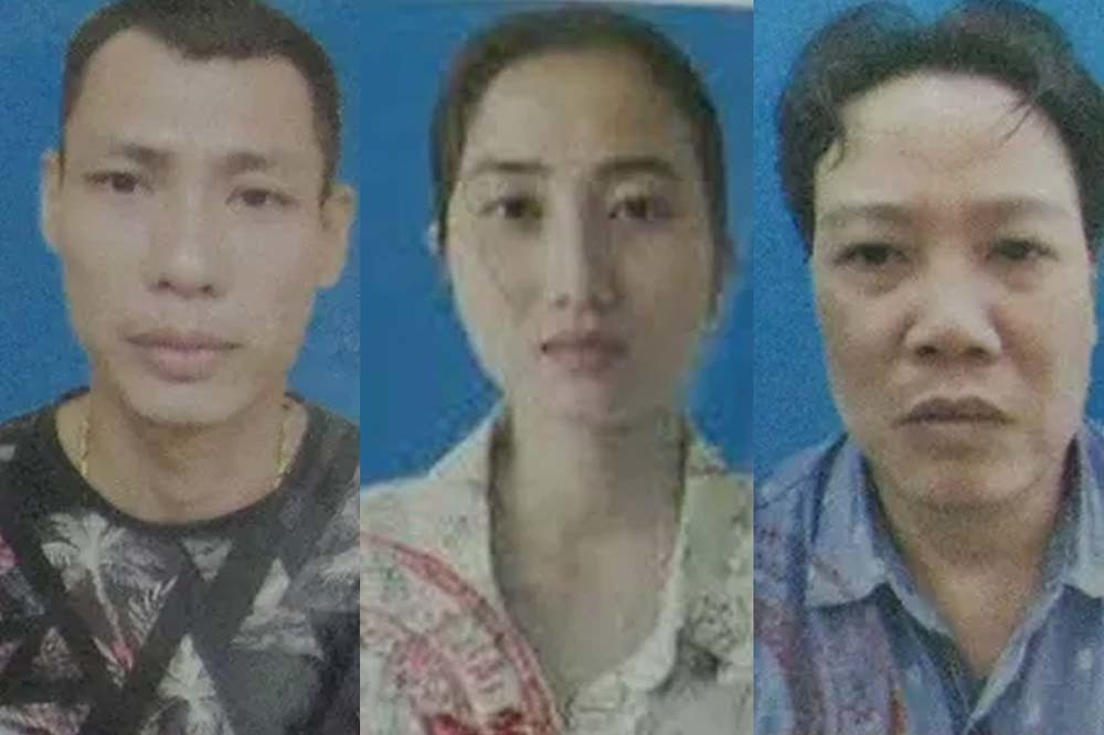 Three seized in Hanoi's commercial surrogacy case