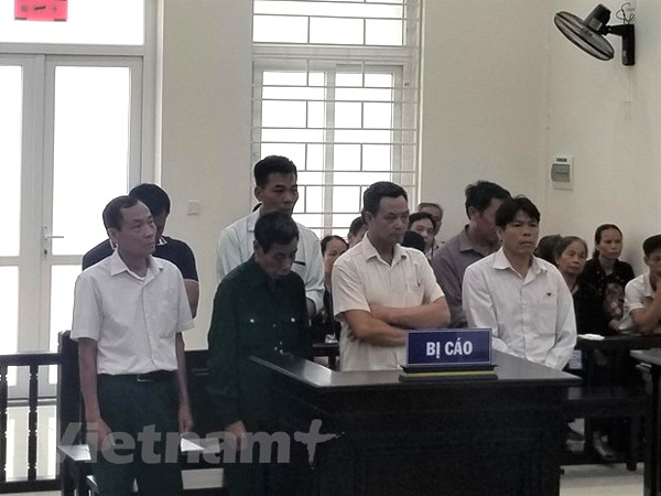 Court announces sentences for land violations in Thanh Oai District