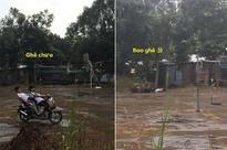 Ngả ngớn trên xe máy sau cơn mưa, hai thanh niên nhận cái kết 'chổng vó lên trời'