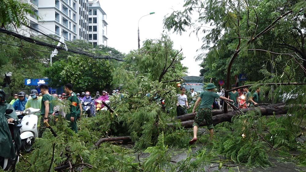 Mưa to, gió giật như bão, cây gãy đổ đè ô tô ở KĐT Linh Đàm
