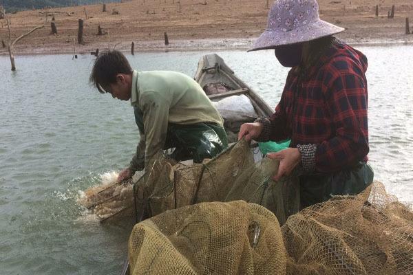 Quảng Trị: Người dân chật vật mưu sinh giữa lòng hồ thủy điện