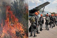 """""""Lá phổi thế giới"""" cháy dữ dội, Brazil điều hàng vạn lính dập lửa"""