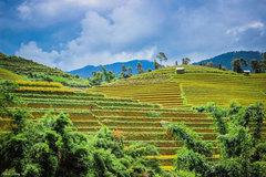 Muong Lo Festival takes place in Yen Bai