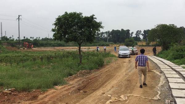 Nở rộ tình trạng dự án 'ảo' phân lô bán nền vùng ngoại thành Hà Nội