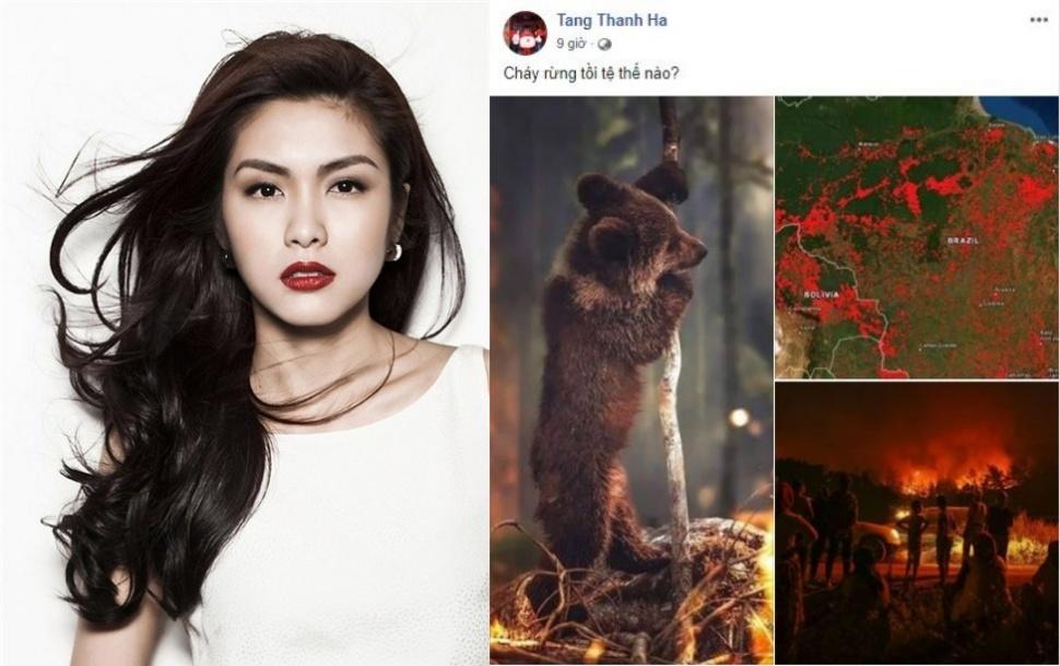Tiểu Vy, Phương Khánh, Tăng Thanh Hà xót xa thảm cảnh cháy rừng Amazon