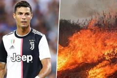 Leonardo DiCaprio, Cristiano Ronaldo khẩn cấp kêu gọi dập lửa rừng Amazon