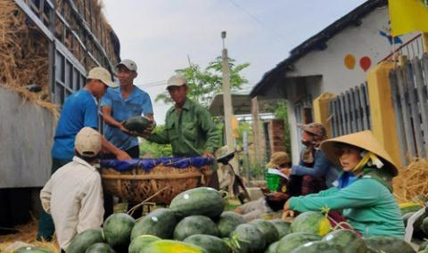 Vietnam's veggies and fruits can no longer cross the border to enter China