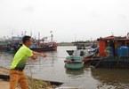 Bão vào miền Trung, 102 thuyền viên chưa thể liên lạc, dân vội gặt lúa xanh