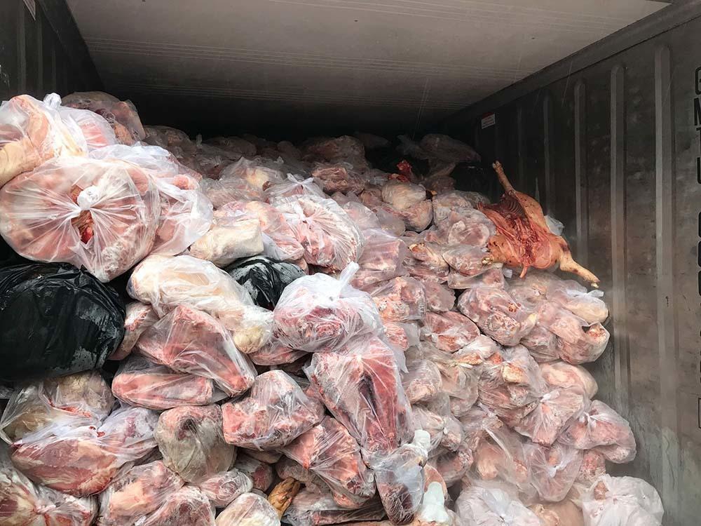 Clip khui thùng container đầy ắp thịt heo thối ở Bình Dương