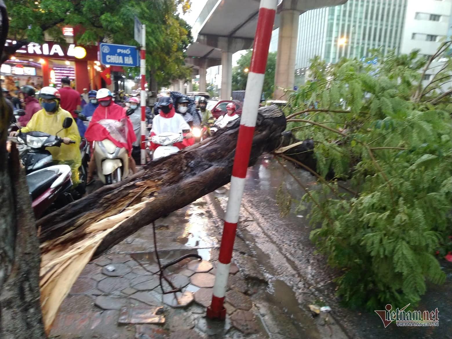 Hà Nội,mưa bão,bão số 4,bão Podul