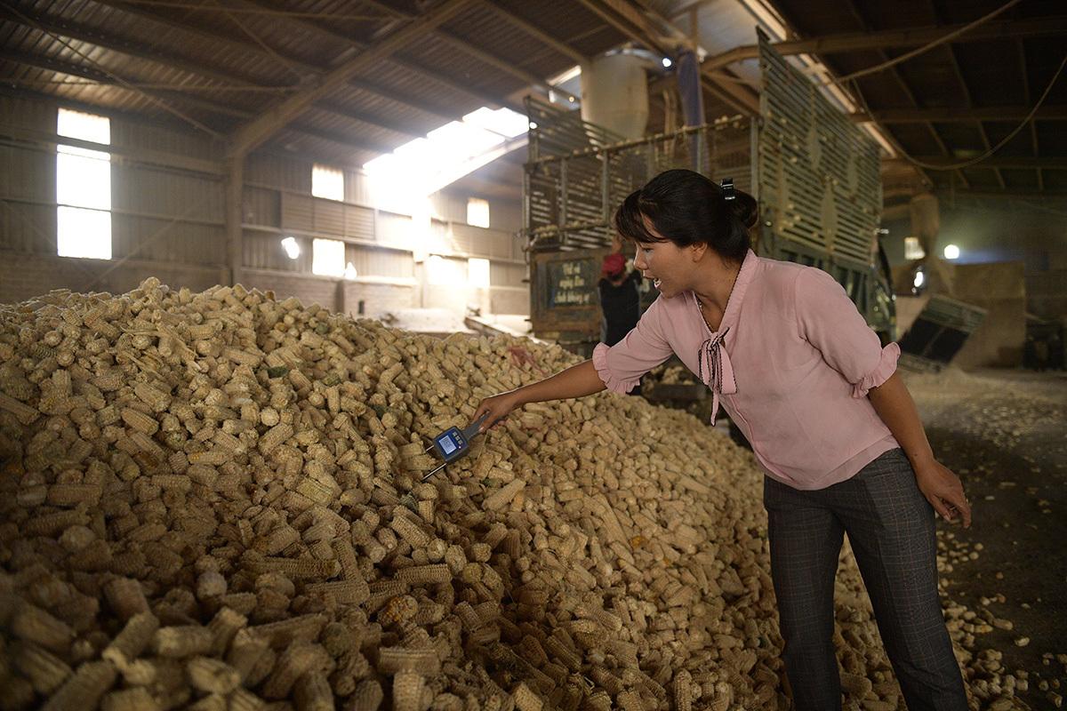 biến đổi khí hậu,nông nghiệp thích ứng biến đổi khí hậu,sản phẩm thân thiện môi trường