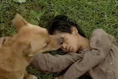 Bé An 'Đất phương Nam' và ký ức khi được chó Phèn cứu sống trong phim