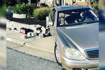 """Bị nhốt trong xe, chó cưng """"lái"""" Mercedes của chủ đâm vào tường"""