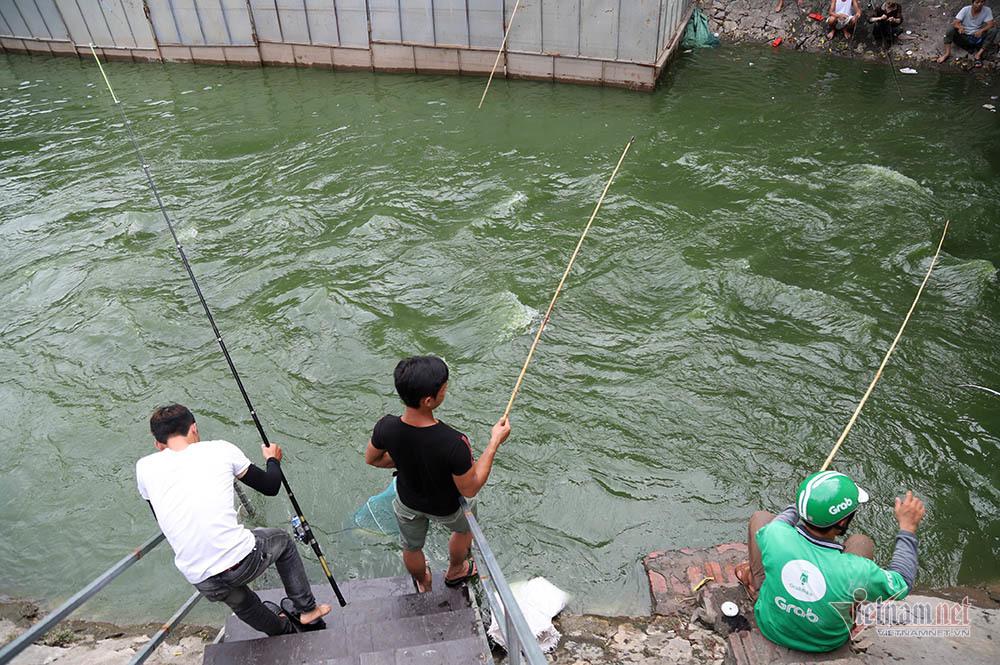 Cần thủ vây kín khu làm sạch của chuyên gia Nhật trên sông Tô Lịch