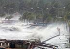 Dự báo thời tiết 3/9, Quảng Trị-Quảng Ngãi gió giật cấp 10, biển động rất mạnh