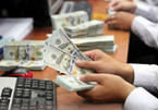 Vietnamese central bank's anti-dollarization on right track