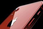 Apple sẽ có iPhone 'đặc biệt' ra mắt mùa xuân 2020