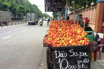Đào, nho, mận Trung Quốc gắn mác Việt bán tràn ngập nhiều phố Sài thành