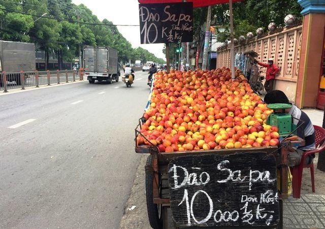 hoa quả Trung Quốc,trái cây Trung Quốc,hàng Trung Quốc