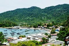 Biodiversity declining in Vietnam's central coastal areas