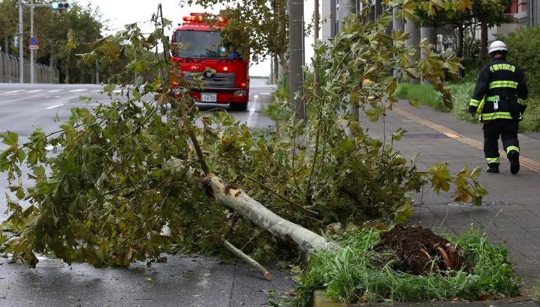 Bão lớn khiến triệu gia đình Nhật mất điện, 100 chuyến bay bị huỷ