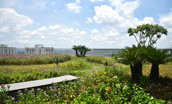 Giá trị nhân văn ẩn sau những khu vườn tại Imperia Sky Garden