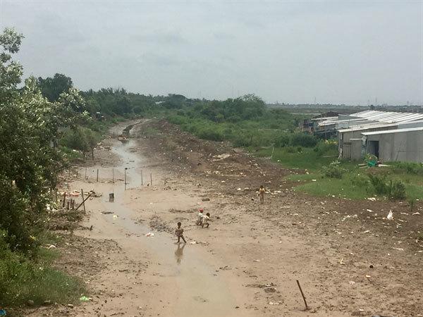 Vietnam's Mekong Delta needs urgent measures to prevent drought, saline-intrusion