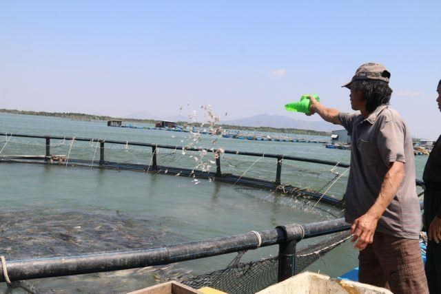 Time for Vietnam to tap ocean aquaculture potential