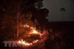 Over 2,500 fire hotspots observed in ASEAN last week
