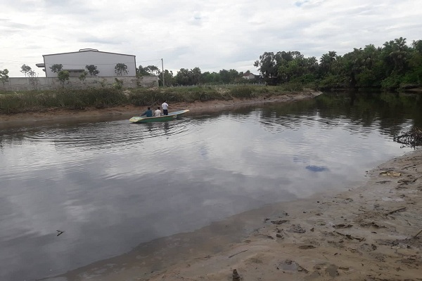 cá sấu,Hà Tĩnh