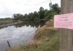 Phát hiện cá sấu dài 2m nổi trên sông ở Hà Tĩnh