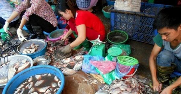 Cá chết ôi thối trở thành món hàng đắt khách nhất chợ đầu mối