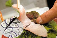 Sán lúc nhúc trong gan người đàn ông do thích ăn gỏi cá