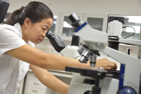 Dâm dương hoắc - thảo dược hỗ trợ tăng cường sinh lý nam giới