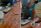 Cảnh đáng sợ trong xưởng làm bánh trung thu ở Trung Quốc