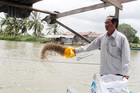 Chuyện Tám Đậu, còng lưng nuôi 2.000 tấn cá/năm rồi ôm tiền tỷ đi từ thiện