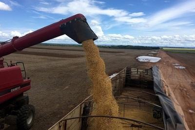 Trung Quốc bất ngờ miễn thuế nông sản Mỹ