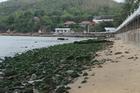 Điều 30 năm chưa từng xảy ra ở bãi biển Quy Nhơn