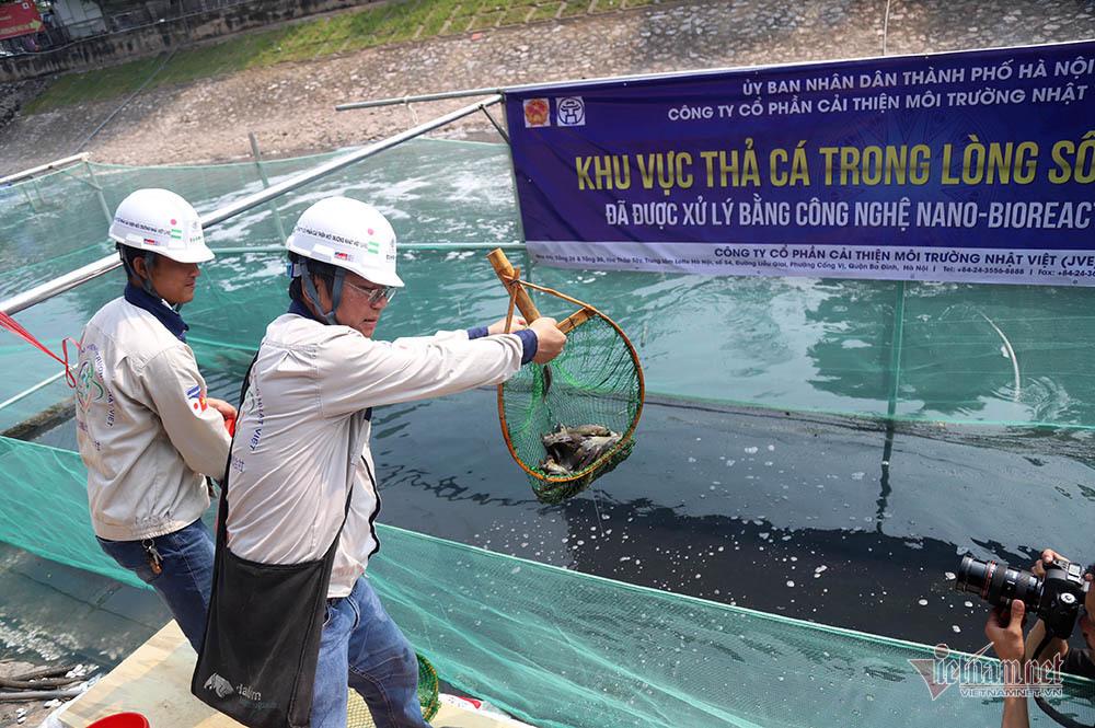 sông Tô Lịch,ô nhiễm môi trường,Hà Nội,hồ Tây