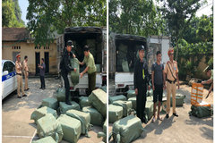 Nhập lậu 2,3 tấn nầm lợn từ Trung Quốc về nội địa tiêu thụ