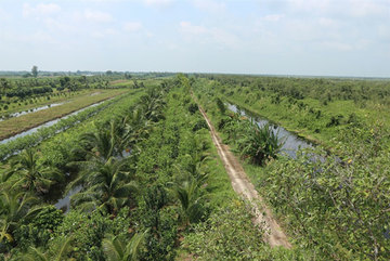 Water source a lifeline for farmers near U Minh Thuong national park